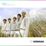 VERMUDA「TRIANGLE」