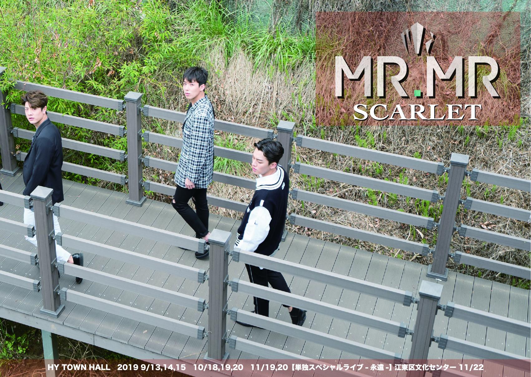MR.MR 2019 LIVE -SCARLET-